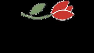 La Tulipe L'Agence qui Shake votre Entreprise